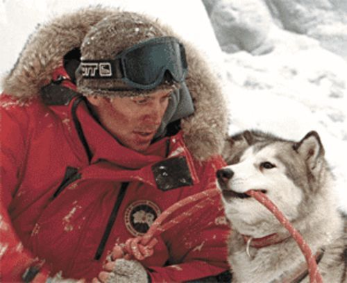 A dog's life: Paul Walker, with Maya, one of the eight huskies that star in Eight Below.