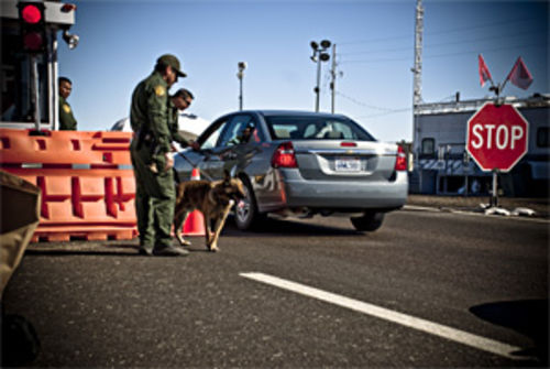 Border Patrol dogs play a daily game of hide and seek.