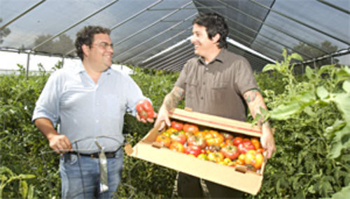Farm to table: Eliot Wexler (left) and Chris Curtiss check out the tomatoes at McClendon Farms.