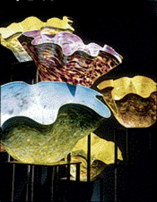 In living color: Dale Chihuly's Macchia Forest glows in the 300 hues of his palette.
