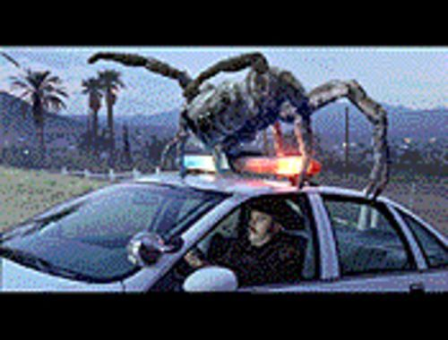 Spider, man!: An Eight Legged Freak snares a cop.
