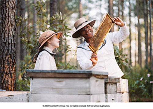 Just like honey: Dakota Fanning and Queen Latifah and their stingered co-stars in The Secret Life of Bees.