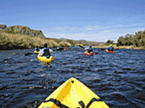 Tubing and kayaking options make the Salt River a popular outdoor destination.