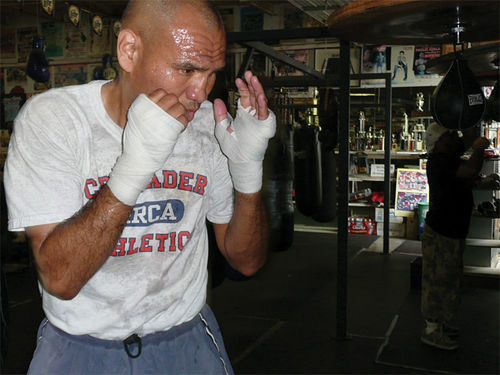 Raging bulls: Frederick Wiseman goes inside the ring for Boxing Gym.