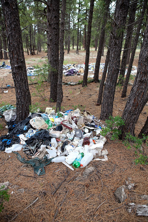 Trash heaps left by homeless campers become a problem.