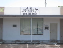 A-Z Seivers Mountain Valley Taxidermy