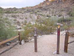 Pima Canyon, South Mountain