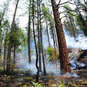 Plane Crash Kills Four, Sparks Wildfire