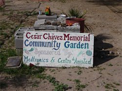 The community garden in the 5,500-soul town of Guadalupe.