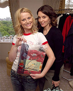 Upper class and broke-ass: Tina Fey and Amy Poehler buddy up in Baby Mama.