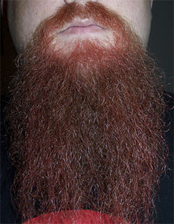 The beard: It's just not just for freak-folk rockers anymore.