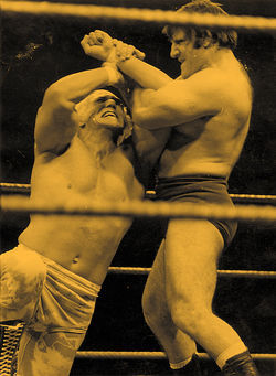 Graham versus Bruno Sammartino