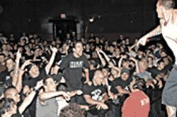 Tough love: Testosterone rages at  the Madball show.