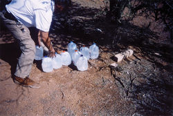 Tohono O'odham tribe member Mike Wilson leaves water jugs in the sign of the cross for migrants on the reservation.