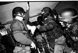 SAU officers say their work is in many ways safer than other police jobs because they   plan things out, have good protective gear and operate in large numbers. They are pictured here moments before jumping from the SAU van to serve a high-risk search warrant.