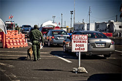 A sign at the I-8 East checkpoint is the only warning that dogs will be used in searches.