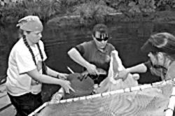 Wildlife biologists remove native fish from Fossil Creek before a chemical is applied to kill exotic species.