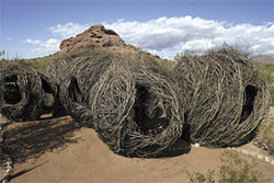 Childhood Dreams by Patrick Dougherty