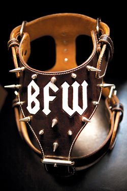 A custom dog harness for one of DMX's cousin's pit bulls bears the initials of DMX's current management company, Built for War.