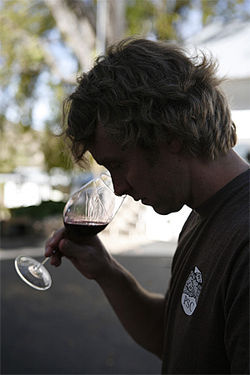 Glomski&#039;s wine takes him right back into the vineyard at harvest.