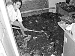 Trisha Golden digs her dead dog out from the burned  debris in the kitchen.