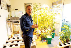 Russ Antkowiak of Aqua Culture in Tempe expects increased of hydroponic equipment and grow lights.
