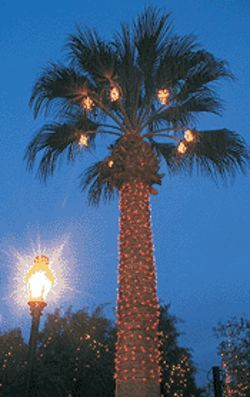 Twinkle, twinkle: Valley sites are bedecked in bulbs.