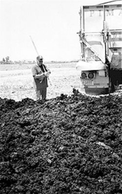 Critics argue that researchers have studied the effects of sludge on crop production, soil and water, but not how it affects human health. Last year alone, 67,000 dry tons of sludge were applied to Arizona soil.