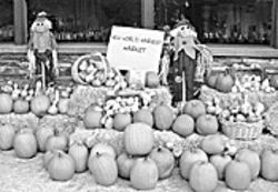 "The ""Great Pumpkin Festival"" is ripe on October 23 and 24."