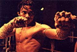 Fists of fury: Tony Jaa struts his stuff in Ong-Bak:  The Thai Warrior.