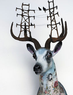 Urban Deer by Elizabeth McGrath and Morgan Slade