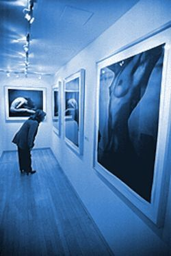 "Photographs from ""Annie Leibovitz's Nudes"" at Amore Mills Gallery."