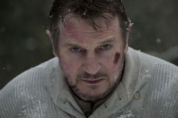 Liam Neeson stars in The Grey.
