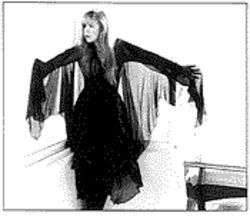 Stevie Nicks: Juggling a solo tour and Fleetwood Mac recording sessions.