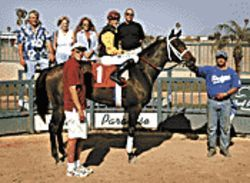 Kyle Kaenel in the winner's circle again, this time aboard Easy Pickins. Trainer Troy Bainum stands beside the horse, left.