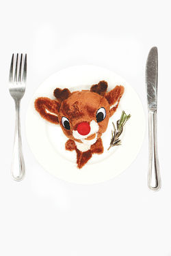 Hungry for some fresh Christmas mascot on a plate?