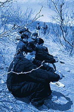 Detained by the Border Patrol, a group of a dozen UDAs sits in the scrub along the highway between Douglas and Bisbee.