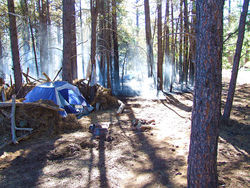 Randall Nicholson, blamed for last year's Hardy fire, was camped on the outskirts of Flagstaff, where a lot of homeless people spend the summer, thanks to the city's enviable summer climate and friendly, tolerant locals.