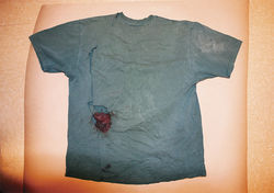 Forensically examining just the bloody T-shirt won&#039;t prove definitively whether Louie Puroll is lying or telling the truth.