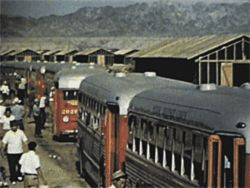 In scenes from the unnamed Poston film, Japanese-Americans arrive at the camp via bus and train, parched and wearing their Sunday best.