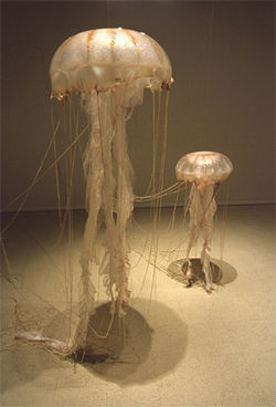 Gwyneth Scally?s jellyfish loom large.