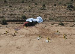 The body of Gabe Cruz lies below a dirt road near 99th Avenue and Lower Buckeye.