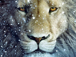 Those lion eyes: Aslan is back for more in another The Chronicles of Narnia sequel.