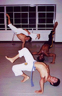 Dynamic trio: Capoeira enthusiasts demonstrate their techniques.