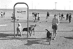 Great! Paws down: PETsMart Dog Park offers plenty for the canine member of the family.