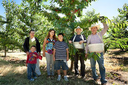 Moreno&#039;s family helps him work his orchard. From left are his two sons, his wife&#039;s mother, his wife, and his brother.