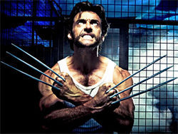 Slice and dice: Hugh Jackman flexes his muscles in X-Men Origins: Wolverine.