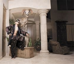 He be stylin': Chef Kaz Yamamoto at his Anthem compound, lounging in imported silk pajamas before a bighorn sheep he bagged last year.